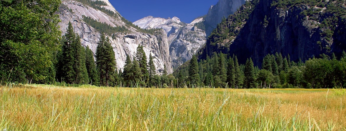 yosemite camp sites can save you a lot of driving time when you want to see the attractions in the park