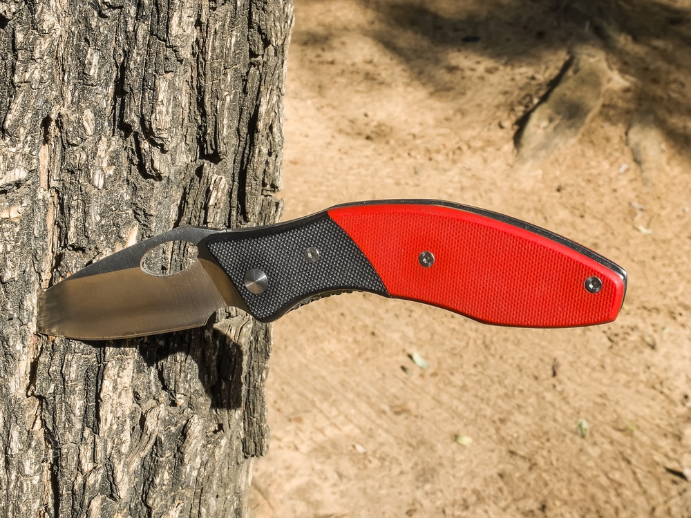 Folding pocket knife with red handle stuck in tree