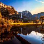 Top Yosemite Camping Tips for Newbies