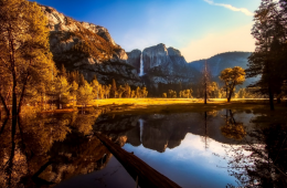 A landscape in Yosemite