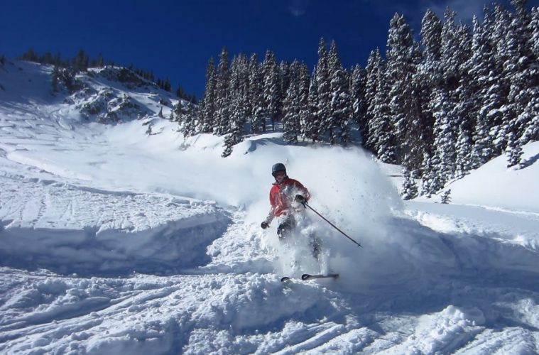 a skier in the snow